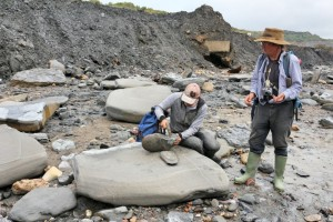 Jurassic Coast - Our fossil-hunting guides from Lyme Regis Museum